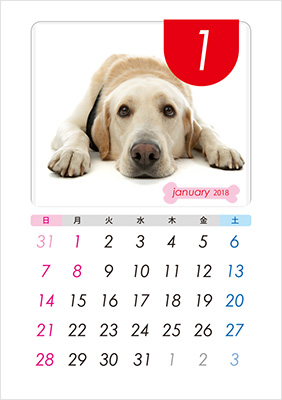 カラフルなカレンダーのテンプレートが豊富!
