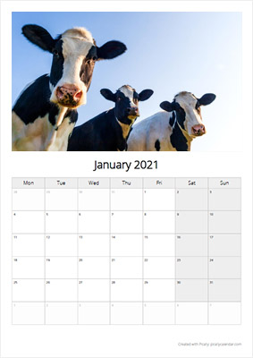 Picallyカレンダー1